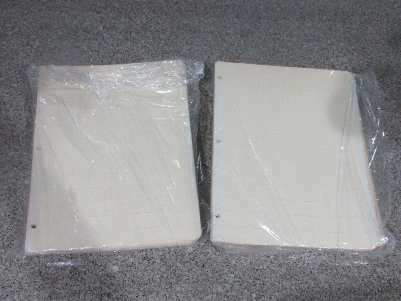 100 brand new Manila stock pages 12 rows 8 1/2 x 11''