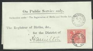 TASMANIA 1906 Birth notice MACQUARIE PLAINS to Hamilton with T perfin 1d...60435