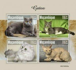 Mozambique - 2019 Cat Breeds - 4 Stamp Sheet - MOZ190520a