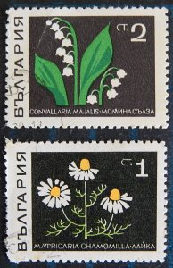 Flowers, Bulgaria, (2647-Т)