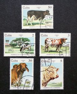CUBA Sc# 2729-2733  CATTLE BREEDING cows CPL SET of 5  1984  used / cancelled