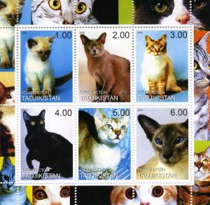 Tajikistan 2000 DOMESTIC CATS Sheet (6) Perforated Mint (NH)