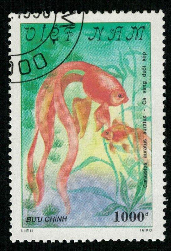 Goldfish, 1000d (T-8629)