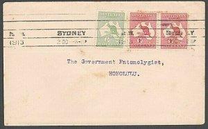 AUSTRALIA 1913 Kangaroos on cover to Hawaii - 2½d rate ex Sydney...........57231
