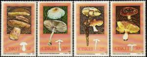 Ciskei - 1987 Edible Mushrooms Set MNH** SG 107-110