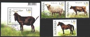 Slovenia. 2019. Pets, horse. MNH.