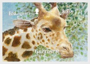 2020 Guernsey Kodofan Giraffe SS (Scott NA) MNH