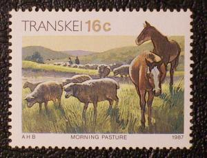 South Africa - Transkei Scott #143 mnh