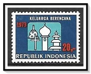 Indonesia #856 Family Planning MNH