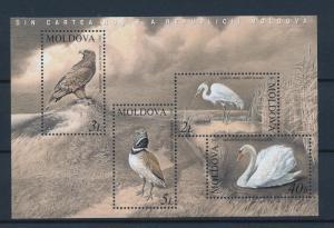 [39615] Moldova 2003 Birds Vögel Oiseaux Ucelli   MNH Sheet