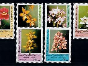 [79832] Somalia 1998 Flora Flowers Blumen Orchids  MNH