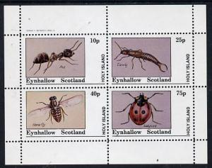 Eynhallow 1982 Insects (Ant, Earwig, Horsefly & Ladyb...