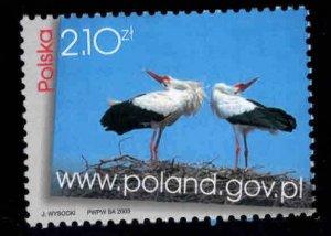Poland Scott 3699 MNH** Nesting Bird stamp