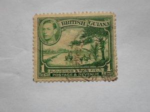 british guiana stampUSED NO HINGE MARKS. # 14