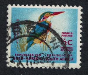 South Africa Kingfisher Bird issue 1961 canc T2 SG#198