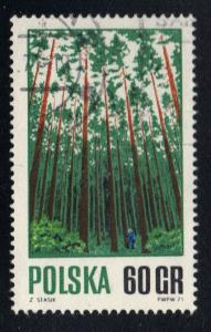Poland 1967  used  forestry management 60g.  #