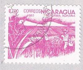 Nicaragua Rice 700 (AP117117)