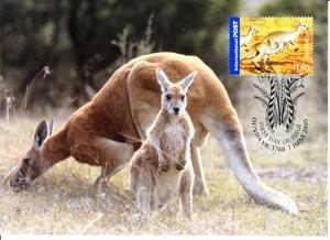 Australia 2005 Maxicard Scott #2389 $1.80 Red kangaroo - Bush Wildlife