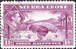 SIERRA LEONE 1941 KGVI 1½d Mauve SG190a Used