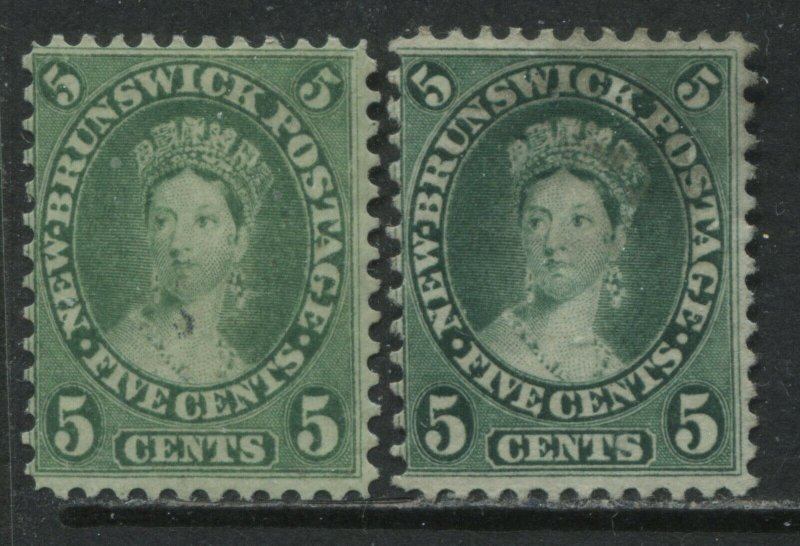 New Brunswick QV 1860 5 cents 2 different shades unused no gum