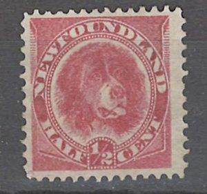 COLLECTION LOT # 2464 NEWFOUNDLAND #56 1887 UNUSED NO GUM CV=$14