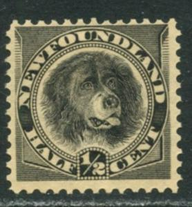 NEWFOUNDLAND Sc#58 SG59 1894 ½c Newfoundland Dog Black OG Mint Hinged