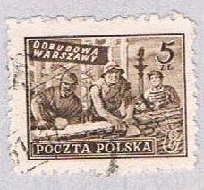 Poland Workders 5 (AP115120)