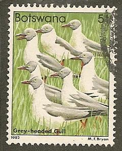 Botswana     Scott  307    Birds     Used
