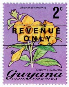 (I.B) British Guiana (Guyana) Revenue : Duty Stamp 2c