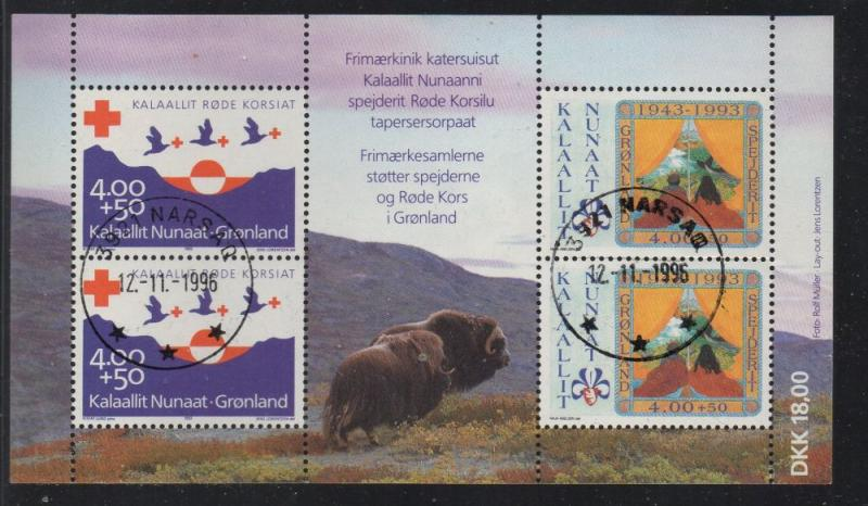 Greenland Sc B18a 1993 Boy Scot Red Cross stamp souvenir sheet used