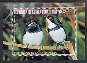 Equatorial Guinea 1976 European Birds perf m/sheet unmoun...