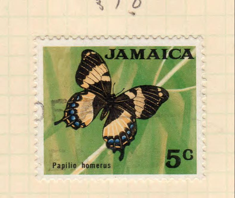 JAMAICA 310 BUTTERFLY DECIMAL  CURRENCY