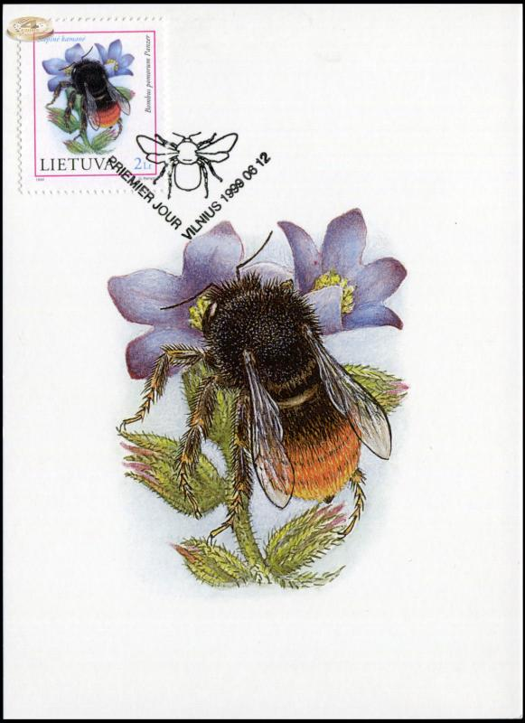 Lithuania. 1999. Apple Bumblebee (Maximum Card, M)