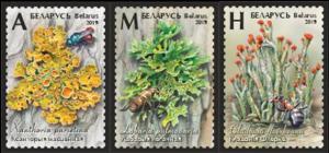 2019Belarus3vFlora. Lichens