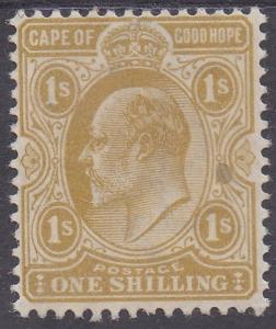 CAPE OF GOOD HOPE 1902 KEVII 1/-