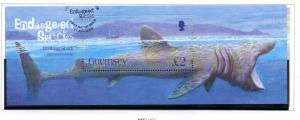Guernsey Sc 874 2005 Basking Shark stamp sheet used