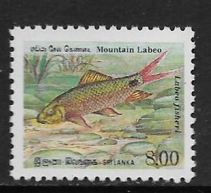 SRI LANKA, 979, MNH, MOUNTAIN LABEO FISH