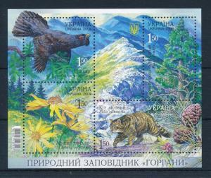 [34779] Ukraine 2009 Animals Bird Fowl Wild cat MNH Sheet