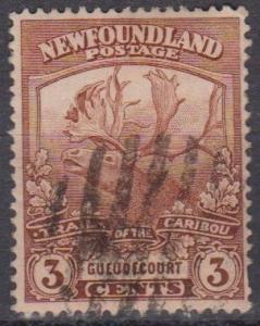 Newfoundland #117 F-VF Used (B1825)