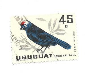 Uruguay 1962 - U - Scott #C248