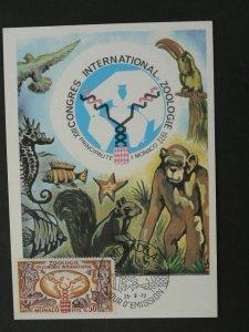 zoology monkey squirrel maximum card Monaco 41702