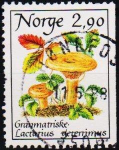 Norway. 1988 2k90 S.G.1041  Fine Used