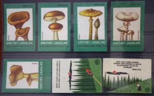 Match Box Labels! flora flower flowers nature mushrooms czechoslovakia GJ34