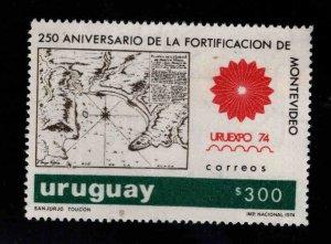 Uruguay Scott 891 URUEXPO 74 stamp