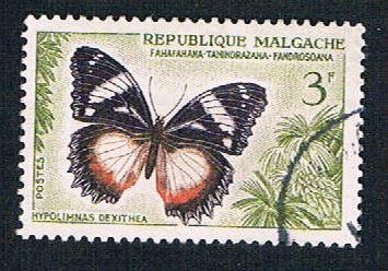 Madagascar 310 Used Butterfly (BP14422)