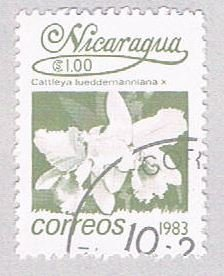 Nicaragua Orchid 100 (AP107224)