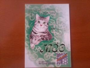 VIETNAM SHEET USED DOMESTIC CATS