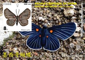 CHINA SHEET IMPERF CINDERELLA BUTTERFLIES INSECTS