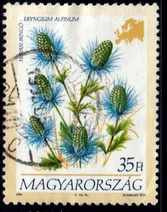 Hungary #3453 Eryngium Alpinum Flower, 1994. Used, PM
