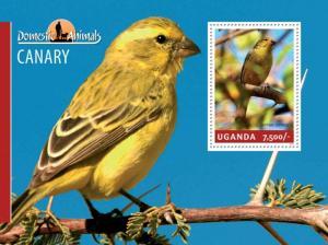 Uganda 2014 Domestic Animals Canary Birds Stamp Souvenir Sheet 21D-138